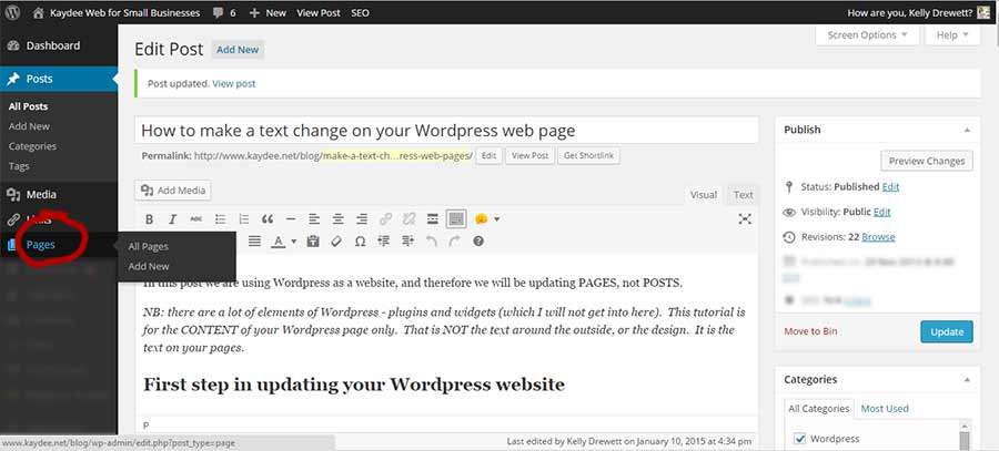 WordPress text editor