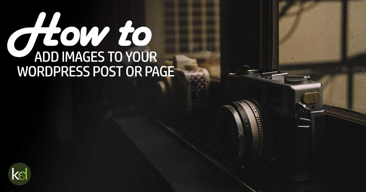 How to add images to WordPress posts or pages