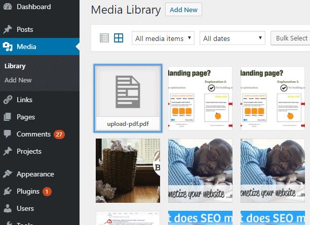 Open the PDF within WordPress
